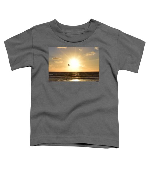 Soaring Seagull Sunset Over Imperial Beach Toddler T-Shirt