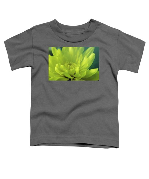 Soft Center Toddler T-Shirt
