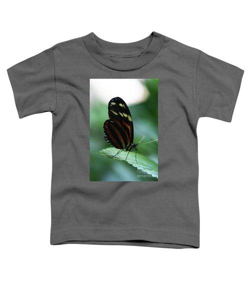 Soft Touch Toddler T-Shirt