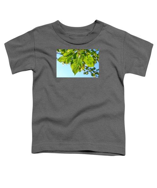 Solar Panels Toddler T-Shirt