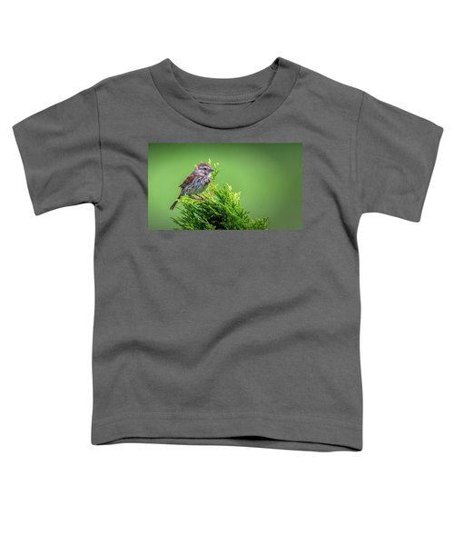 Song Sparrow Perched - Melospiza Melodia Toddler T-Shirt