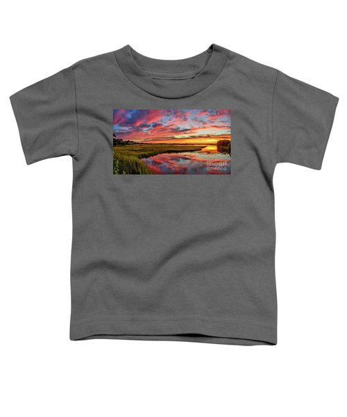 Sound Refections Toddler T-Shirt