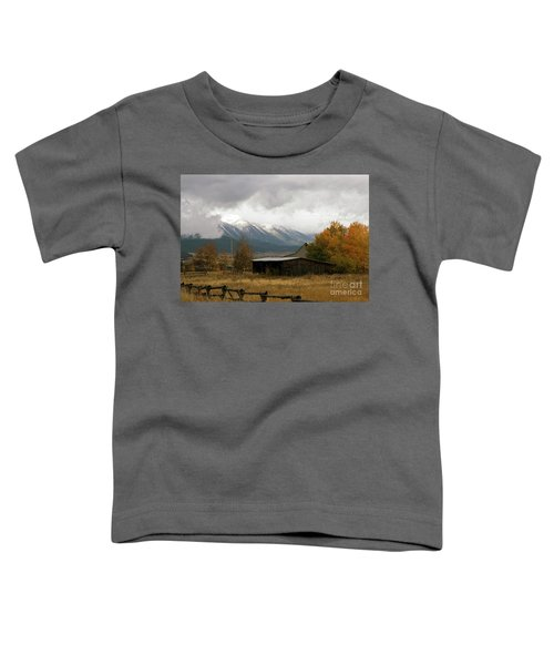 South Idaho Rt 20 Toddler T-Shirt