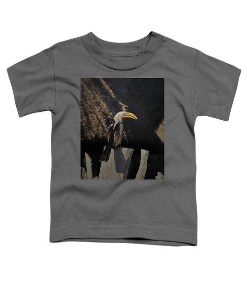Southern Yellow Billed Hornbill Toddler T-Shirt