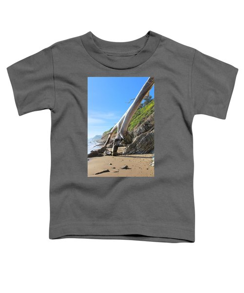 Spears On The Coast Toddler T-Shirt