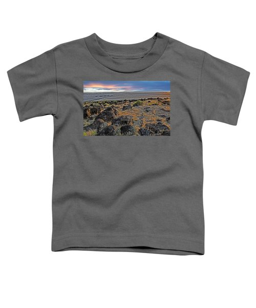 Spiral Jetty Toddler T-Shirt