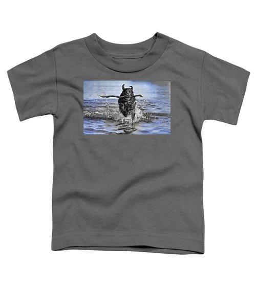 Splashing Fun Toddler T-Shirt