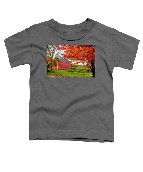 Splendid Red Barn In The Fall Toddler T-Shirt