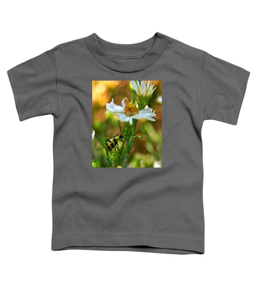 Spotted Cucumber Beetle On Aster Toddler T-Shirt