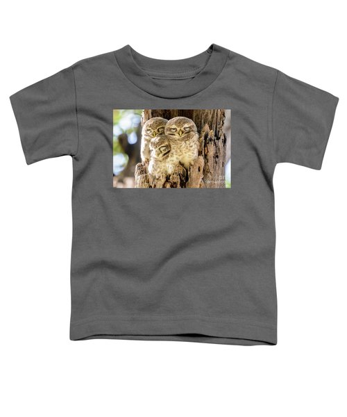 Spotted Owlets Toddler T-Shirt