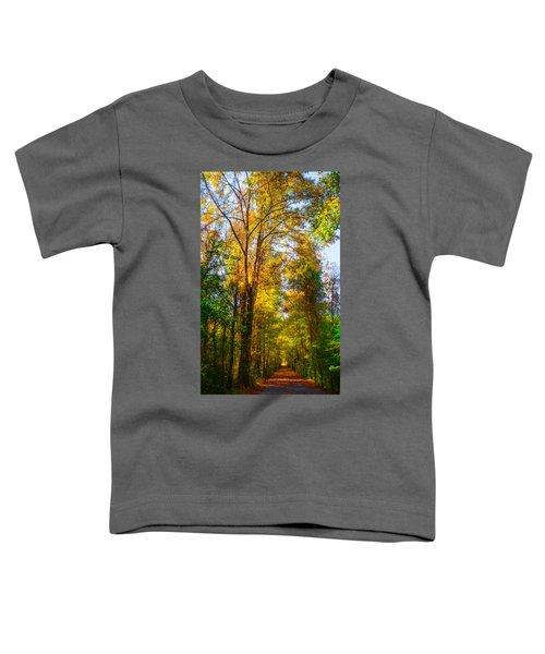 Spring Path Toddler T-Shirt