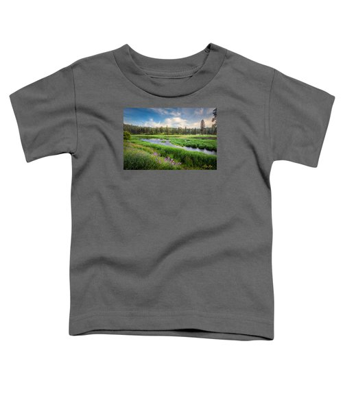Toddler T-Shirt featuring the photograph Spring River Valley by Rikk Flohr