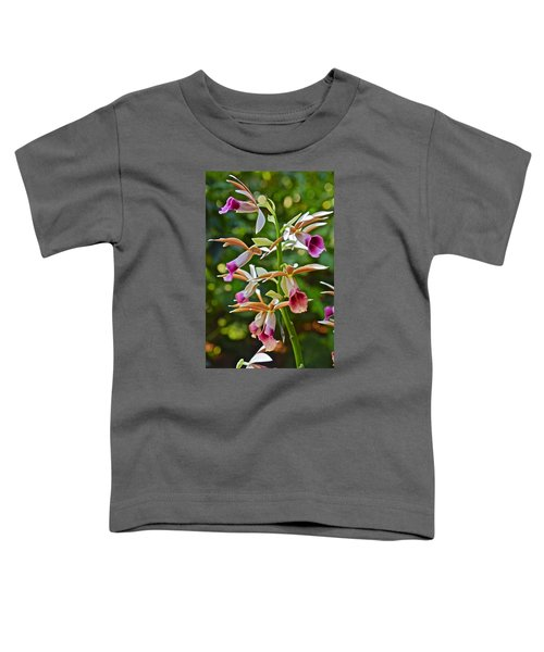 Spring Show 15 Nun's Orchid 1 Toddler T-Shirt