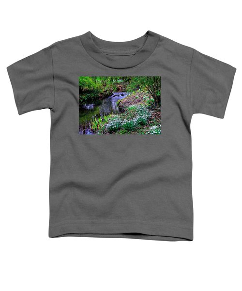 Spring Snowdrops By Stream Toddler T-Shirt