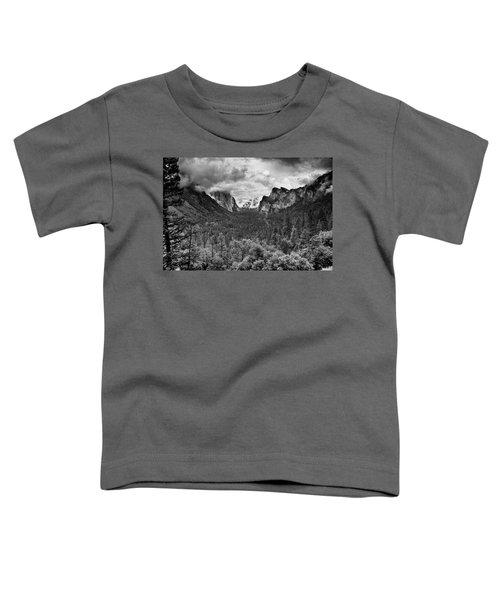 Spring Storm Toddler T-Shirt