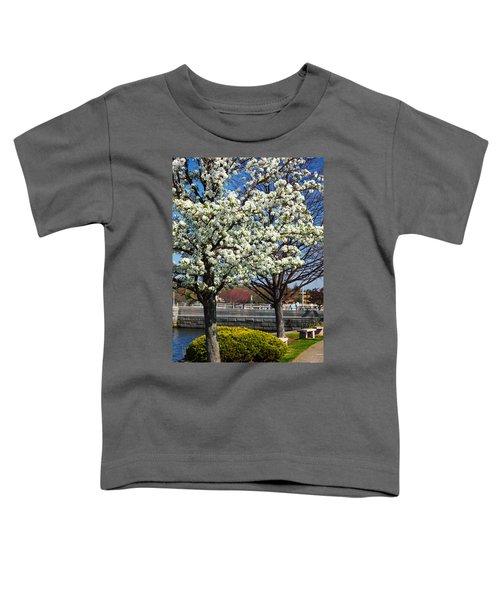 Spring Time In Westport Toddler T-Shirt