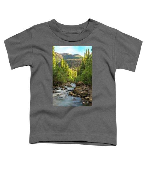 Squaw Creek, Colorado #2 Toddler T-Shirt