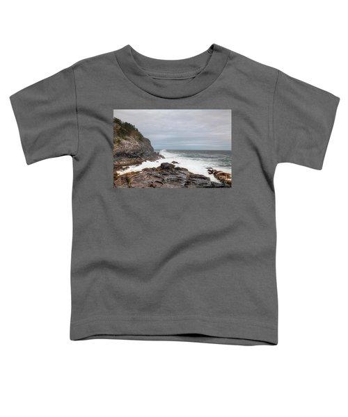 Squeaker Cove Toddler T-Shirt