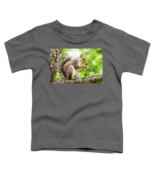 Squirrel Eating On A Branch Toddler T-Shirt