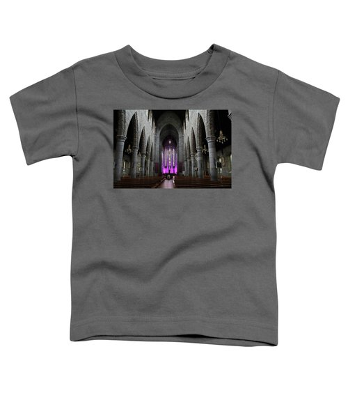 St. Mary's Cathedral, Killarney, Ireland 2 Toddler T-Shirt