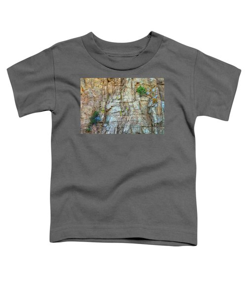 Toddler T-Shirt featuring the photograph St Vrain Canyon Wall by James BO Insogna