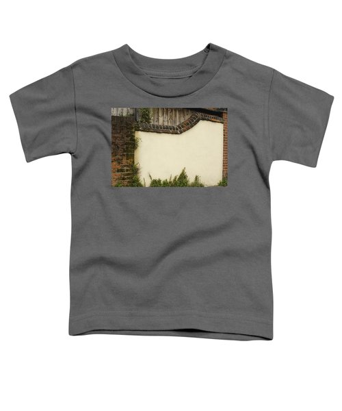 Stage-ready Toddler T-Shirt