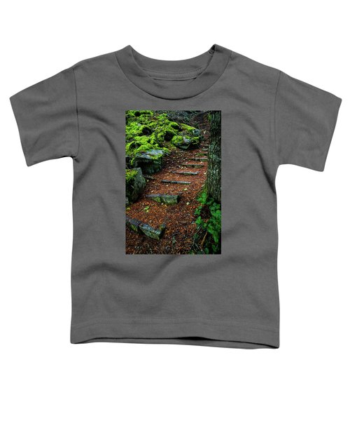 Stairway To..... Toddler T-Shirt