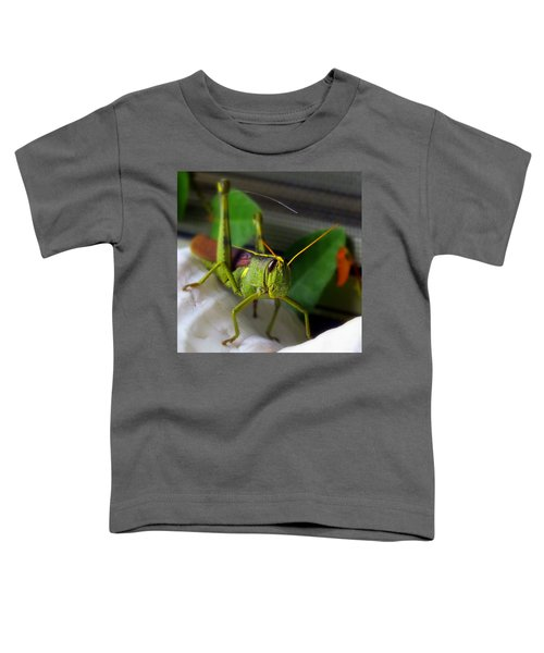 Stand Off Toddler T-Shirt