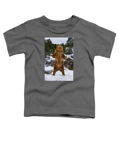 Standing Grizzly Bear Toddler T-Shirt
