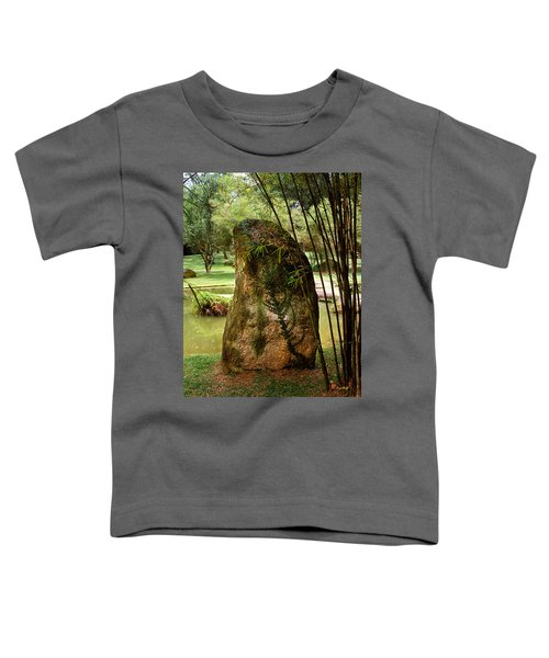 Standing Stone With Fern And Bamboo 19a Toddler T-Shirt