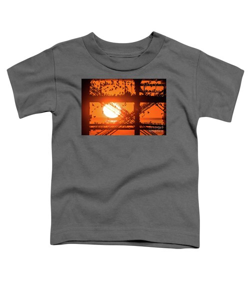 Starlings At Sunset Under Aberystwyth Pier Toddler T-Shirt