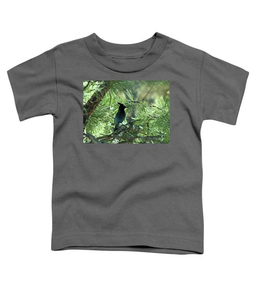 Stellarjay1 Toddler T-Shirt