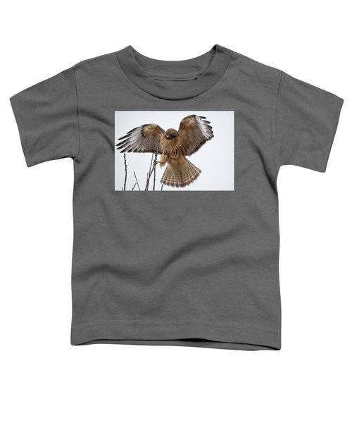 Stick The Landing Toddler T-Shirt