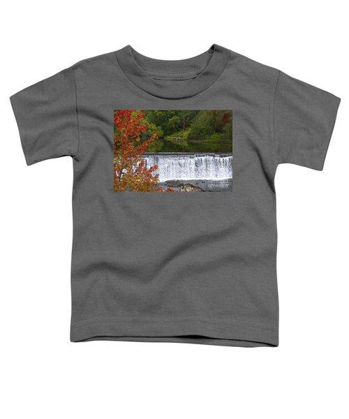 Stillness Of Beauty Toddler T-Shirt
