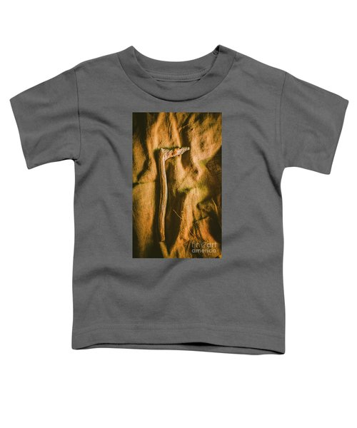 Stone Age Tools Toddler T-Shirt