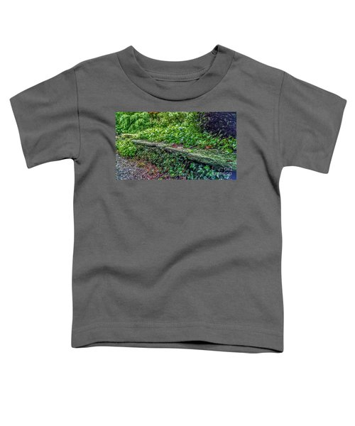 Stone Wall At Laurelwood Toddler T-Shirt
