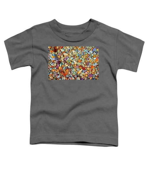 Stones And Barks On Beach Toddler T-Shirt