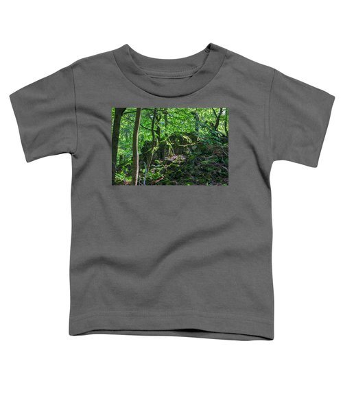 Stones In A Forest In Vogelsberg Toddler T-Shirt