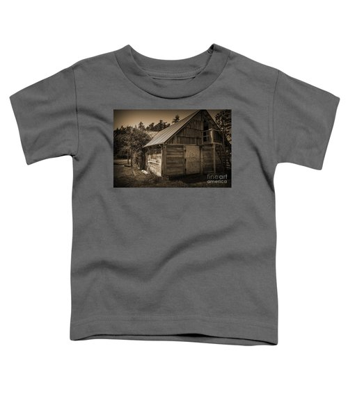 Storage Shed In Sepia Toddler T-Shirt