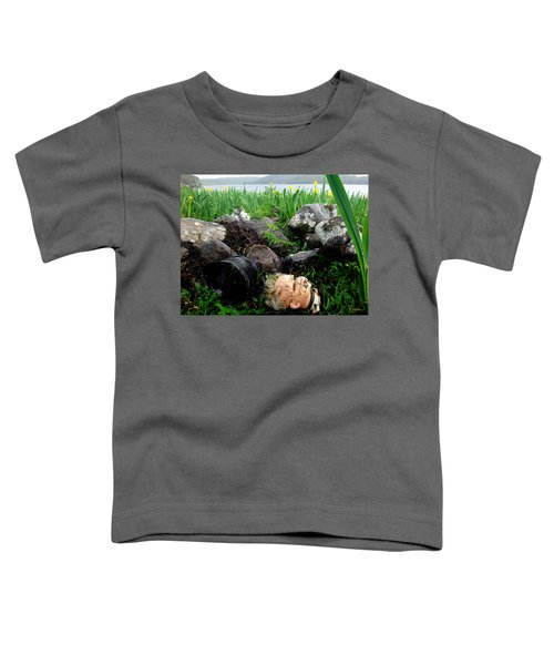 Storm Casualty Toddler T-Shirt