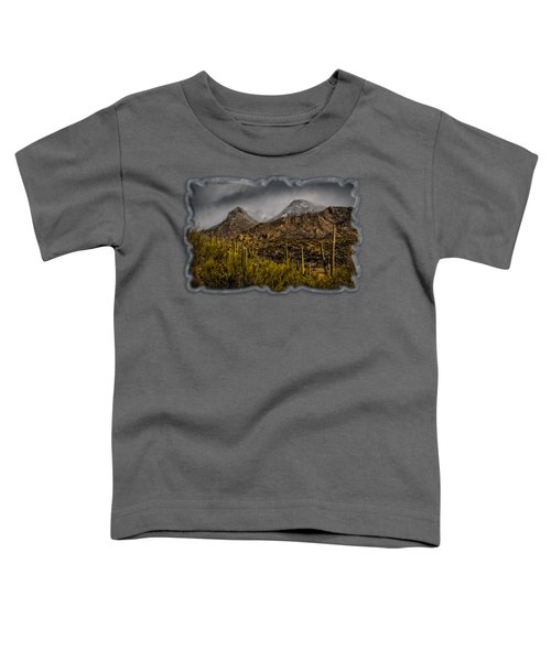 Storm Over Catalinas 15 Toddler T-Shirt by Mark Myhaver