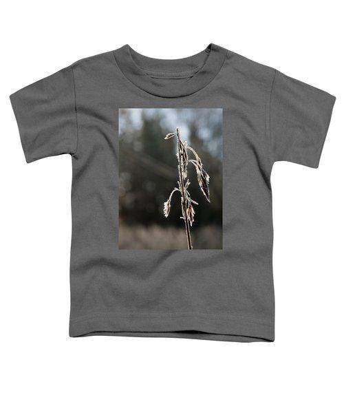 Straw In Backlight Toddler T-Shirt