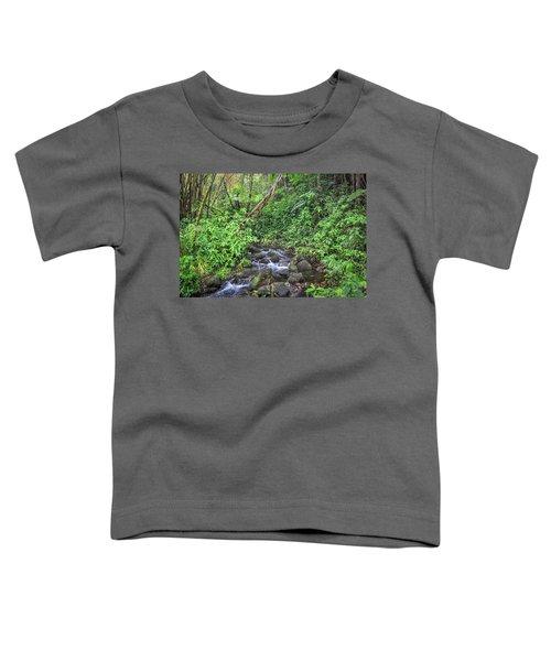 Stream In The Rainforest Toddler T-Shirt