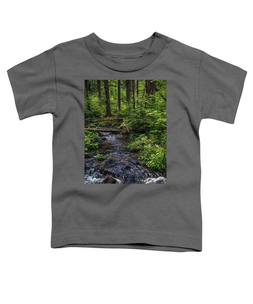 Streaming Toddler T-Shirt
