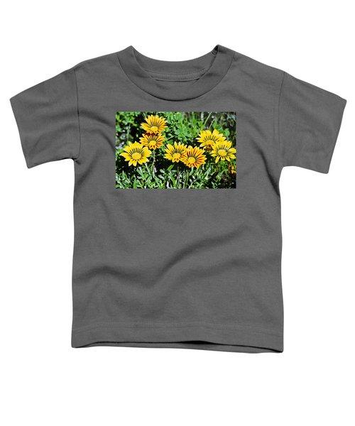 Striped Daisies--film Image Toddler T-Shirt