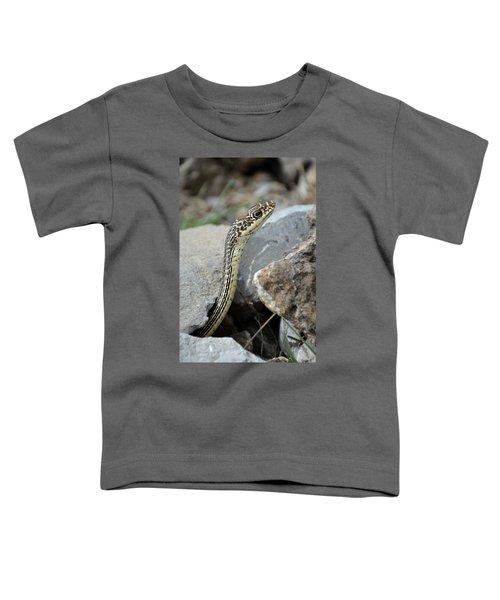 Striped Whipsnake, Masticophis Taeniatus Toddler T-Shirt