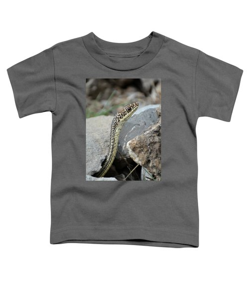 Striped Whipsnake, Masticophis Taeniatus Toddler T-Shirt
