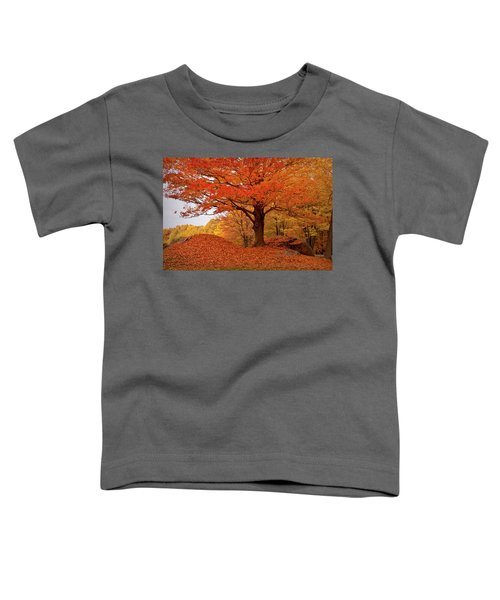 Sturdy Maple In Autumn Orange Toddler T-Shirt