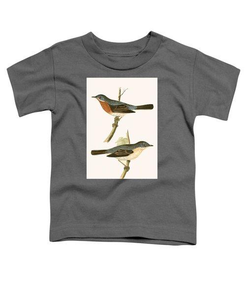 Sub Alpine Warbler Toddler T-Shirt by English School