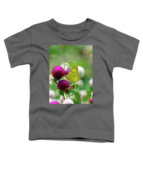 Sulfur Butterfly On Globe Amaranth Toddler T-Shirt